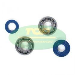 Set bearings + oil seals -Top Performance - AM6