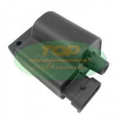 Ignition Coil With CDI Top Performance for Piaggio , Vespa 50 4T