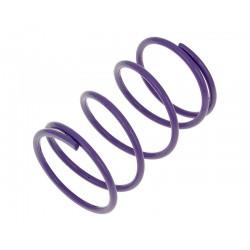 Torque spring Malossi MHR purple