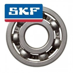 Bearing  - Tomos - 6000 -C3 SKF