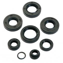 Oil seals kit Minarelli AM6 8 pcs. - T4Tune