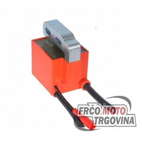 Ignition coil SELETTRA A2 analg