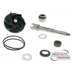 Water pump repair kit APRILIA ATLANTIC 500 , SCARABEO 500