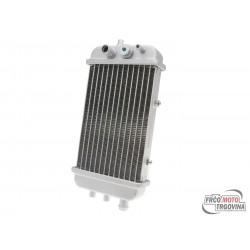 Radiator for Derbi Senda 50, Aprilia RX 50, SX 50, Gilera RCR 50, SMT 50