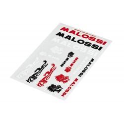 Mini MALOSSI set u boji