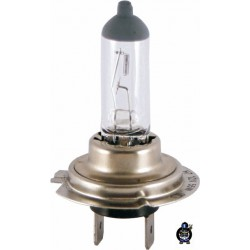 Bulb H7 12V 55W Clear RMS