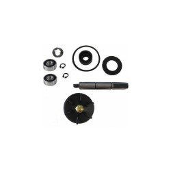 Water pump repair kit for Piaggio , Gilera LC 50cc  - RMS