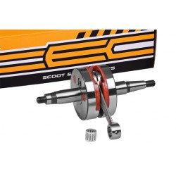 Gred TEC RACING -Derbi D50B0 od 2006