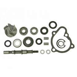 Vodna črpalka Kymco 250 - 300 LC-Grand Ding , Bet&Win , KXR 250 Sport ,MXU250 , MXU300 , Xciting 250 , PGO-Bugrider 250