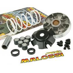 Variomat Malossi Multivar 2000 Piaggio 50cc (od letnika 1999) - uteži 1