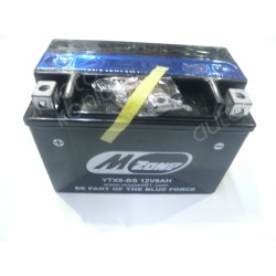 Baterija 12V 8Ah  (YTX9-BS)