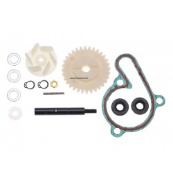 Water pump repair kit  Derbi D50B0