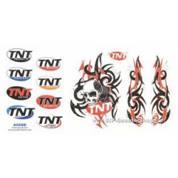 Nalepka TNT skull/tribal