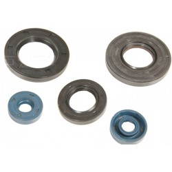 Engine Oil Seals Kit Aprilia ROTAX 125 - 150 - 200  ATHENA