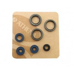 Komplet oljnih tesnil Athena Rotax 122 - Aprilia RS 125 , RX , MX , Classic