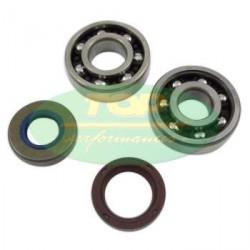 Set bearings + oil seals TOP Performance -AM6 -SKF
