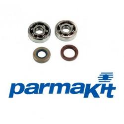 Set ležajev radilice AM6 -Parmakit - High Speed -SKF C3